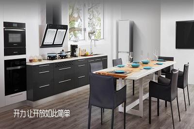 水槽洗碗机品牌排行前十名,开力洗碗机是几线品牌?