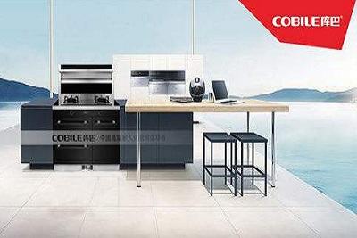 水槽洗碗机品牌排行前十名,库巴洗碗机是几线品牌?
