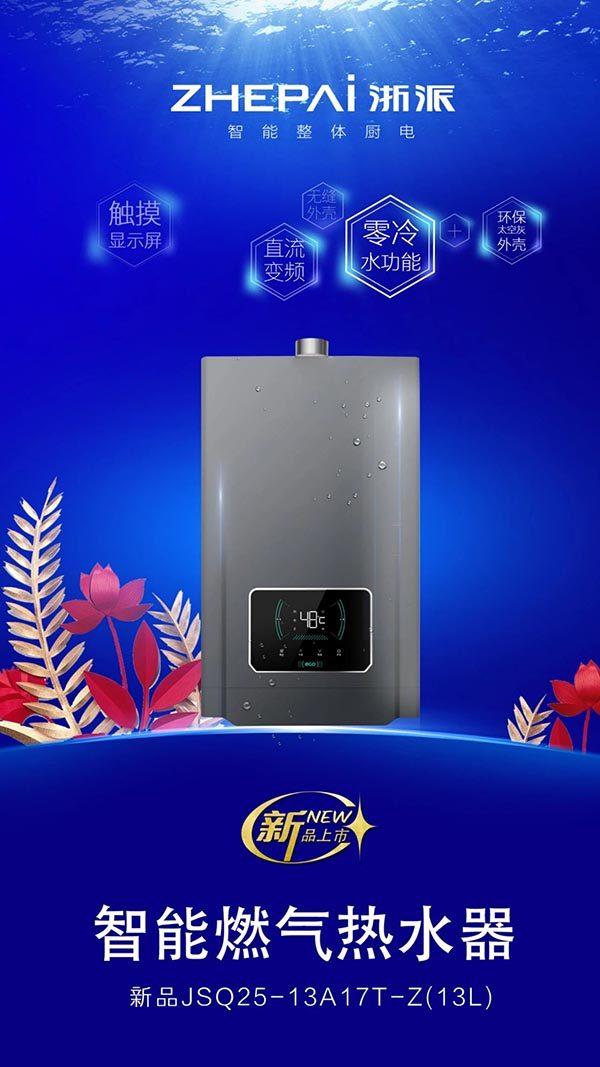 浙派新品热水器