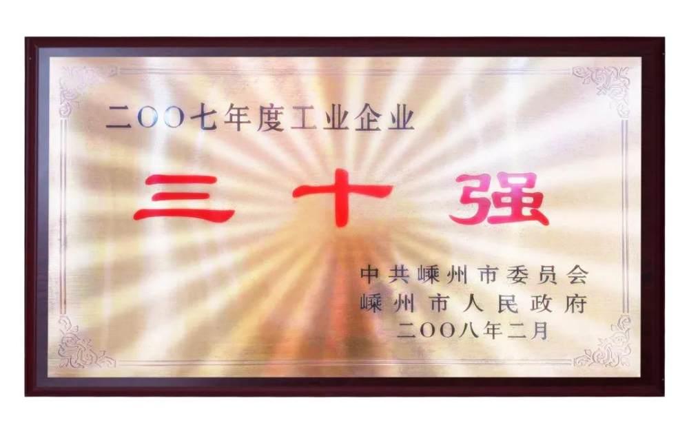 佳歌获企业三十强荣誉
