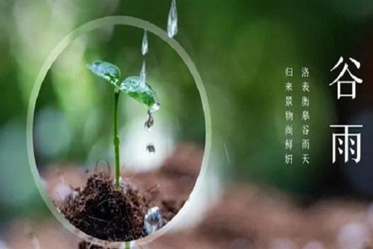 """谷雨丨博净分体式集成灶,你的""""饮食百科全书"""""""
